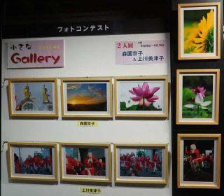 【小さなギャラリー】今回は2人展(森園・上川)です。